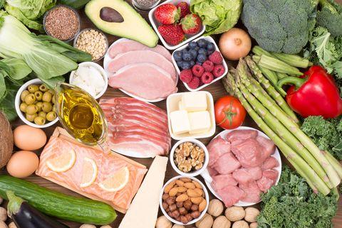 university of south florida professor ketogenic diet